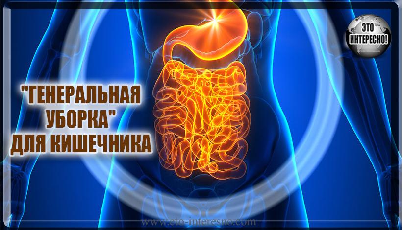 """""""ГЕНЕРАЛЬНАЯ УБОРКА"""" ДЛЯ КИШЕЧНИКА"""