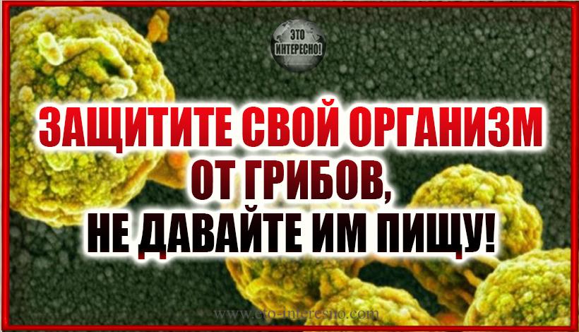 ЗАЩИТИТЕ СВОЙ ОРГАНИЗМ ОТ ГРИБОВ, НЕ ДАВАЙТЕ ИМ ПИЩУ!