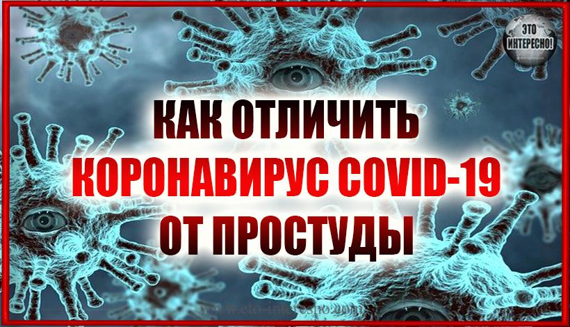 КАК ОТЛИЧИТЬ КОРОНАВИРУС COVID-19 ОТ ПРОСТУДЫ